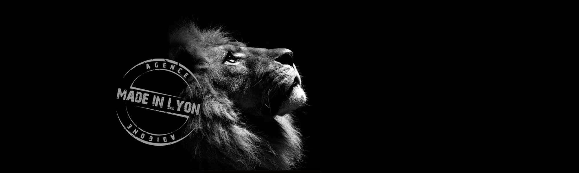 adigone-visuel-lion-made-in-lyon