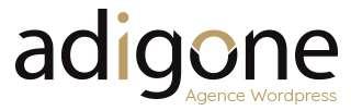 Adigone agence Wordpress à Lyon